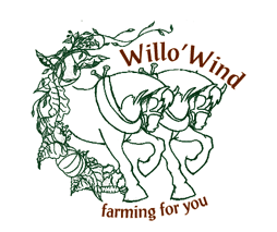 Willo' Wind